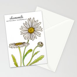 tea botanicals | Chamomile // relaxing herbal Stationery Cards
