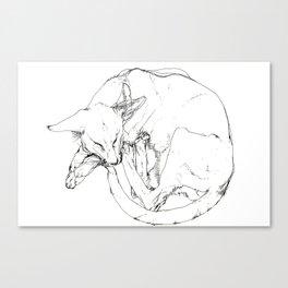 tender Canvas Print