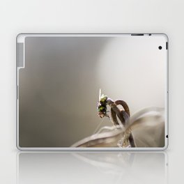 Chains and Fly Laptop & iPad Skin