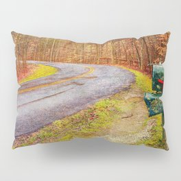 To Grandmothers House Pillow Sham
