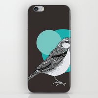 sparrow iPhone & iPod Skins featuring Sparrow by Rachel Russell