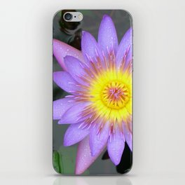purple water lilly iPhone Skin