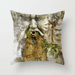 He Who Drools Throw Pillow