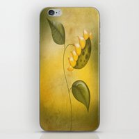sunflower iPhone & iPod Skins featuring Sunflower by flamenco72