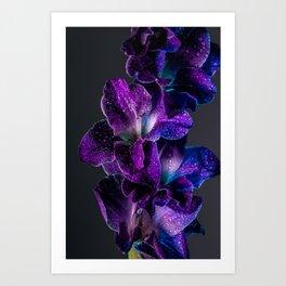 Blue and Purple  Art Print