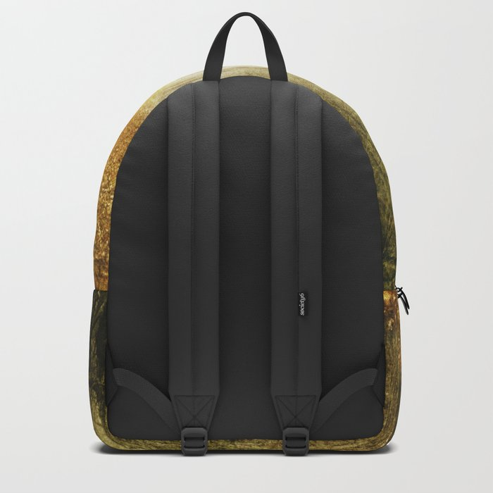 Man in the woods. Backpack