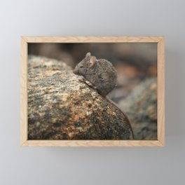 Mouse Mountain Framed Mini Art Print