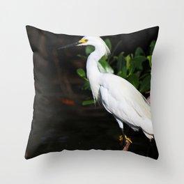 A Fresh Outlook Throw Pillow
