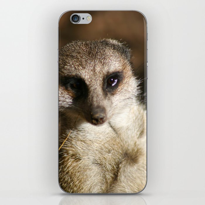 Meerkat love iPhone Skin