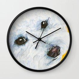 Blair the Bichon Frise Wall Clock