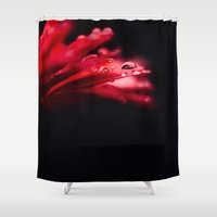 erotic Shower Curtains featuring Erotic Gerbera by Tomas Hudolin