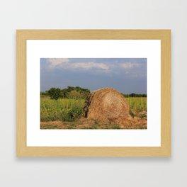 Kansas Hay Bale in a Farm Field Framed Art Print