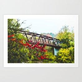 Bridge The Gap Art Print