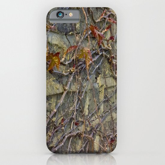 Wall climbers iPhone & iPod Case