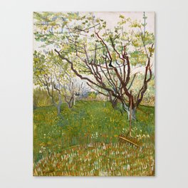 Flowering Orchard by Vincent van Gogh Canvas Print