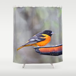 Oranges for the Oriole Shower Curtain