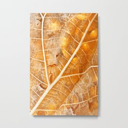 Burning Bokeh Leaf Metal Print