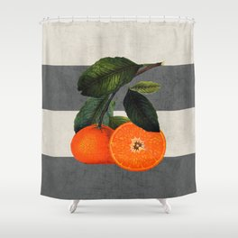 botanical stripes 6 -gray Shower Curtain