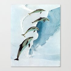 ACCLIMATIZE Canvas Print