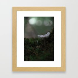 Abstract Nature II Framed Art Print