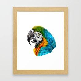 parrot portrait Framed Art Print