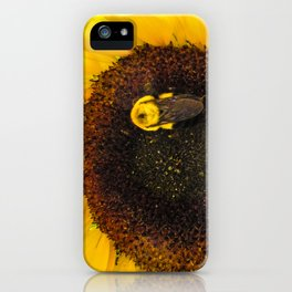 Bumble Bee on a Sunflower iPhone Case