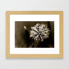Just Dandy Dandelion Framed Art Print
