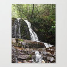 Tennessee Waterfall Smoky Mountains Color Photo Canvas Print