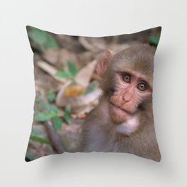 Young Rhesus Macaque with Food in Cheeks Throw Pillow
