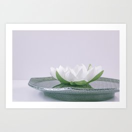 white lotus flower in a green bowl; wisteria white background Art Print