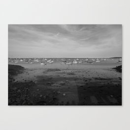 From the Shore - Plymouth Massachusetts Shoreline Canvas Print