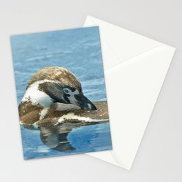 Humboldt penguin (Spheniscus humboldti) Stationery Cards