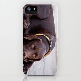 the hound dog iPhone Case