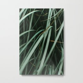 Green leaves wind nature art mindful photography  Metal Print