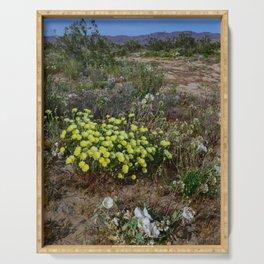 Painted_Desert 7271 - Johnson_Valley, California Serving Tray
