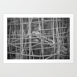 Twisted in Fence Art Print