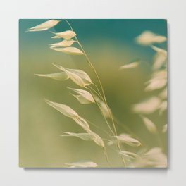 oats in soft breeze Metal Print