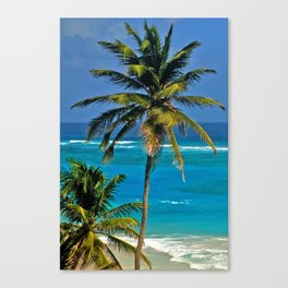 SEA DREAMING Canvas Print
