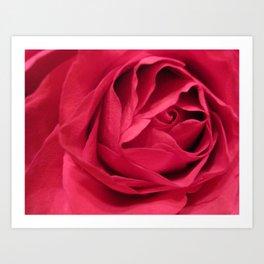 rose spiral Art Print