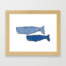 Whales Framed Art Print