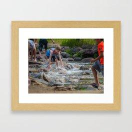 Mississippi Headwaters Fun Framed Art Print