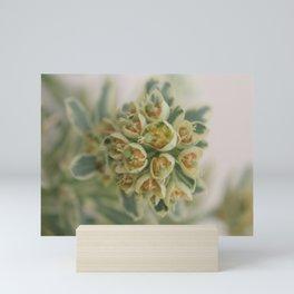 Small   Soothing Mini Art Print