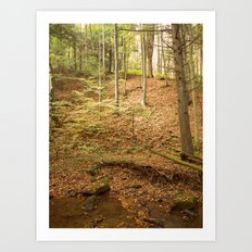 Life Is Uphill Art Print