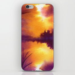 Colorbanks iPhone Skin