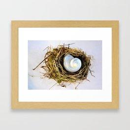 BIRD NEST AND WHITE SEASHELL Framed Art Print