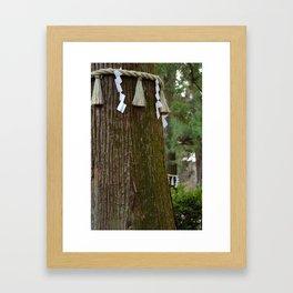 Sacred Trees Framed Art Print