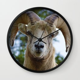 Natures best starring contest Wall Clock