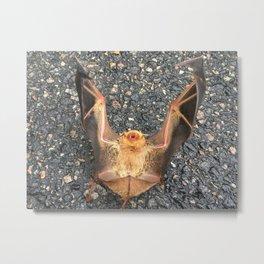 Bat Down Metal Print