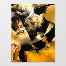 Undefined Abstract #1 Canvas Print