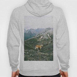 Mountain Pup Hoody
